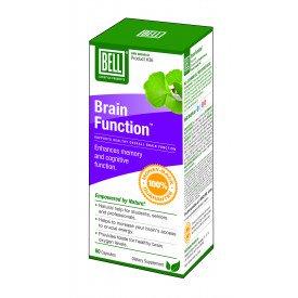 36-brain_function_cdn_3d